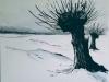 Winterwilg
